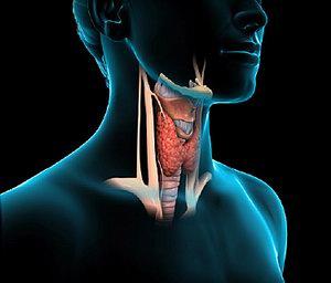 A (szintetikus) T4 pajzsmirigy-hormonok pótlásának genetikai, azaz személyes kérdései